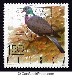 Postage stamp Poland 1970 Wood Pigeon, Game Bird - POLAND -...