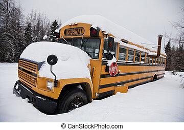Abandoned weird school bus