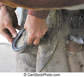Farrier working - Farrier working on horse shoes outdoors