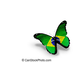 Brazilian flag butterfly, isolated on white background