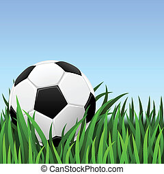 Soccer background – classic soccer ball on the green grass.