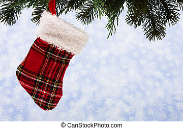 Stocking - Christmas stockings hanging from a tree on...