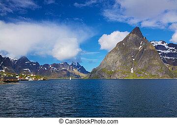 Scenic norwegian fjord on Lofoten during sunny summer day