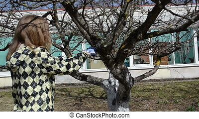 gardener cut tree twig - gardener blond woman hand cut prune...