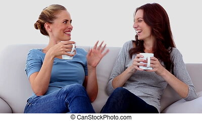Friends chatting over cups of coffee at home on the couch