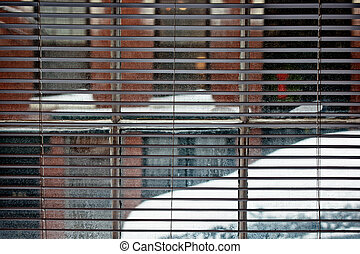 looking out - looking through open blinds and window at snow...