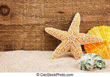 Sea star and shells on rough wood background