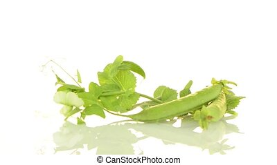 Green peas pod rotate on white background