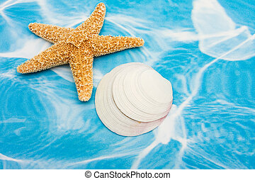 Starfish and Seashells - Starfish and seashells on a blue...