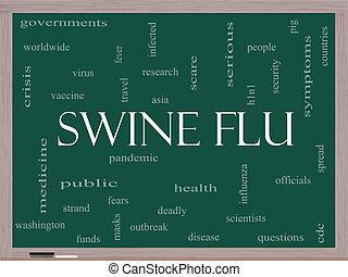 Swine Flu Word Cloud Concept on a Blackboard
