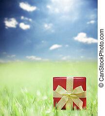 ajándék, füves, háttér
