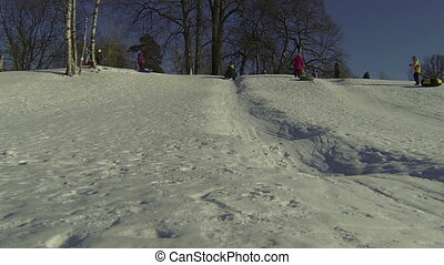 Children, slide, down, icy, hill