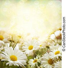 blanco, flores