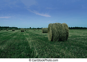 haystack