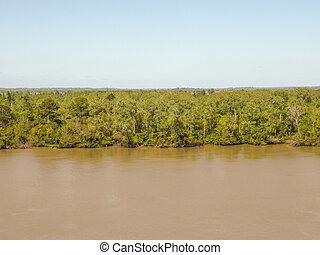 parana river - delta of parana river