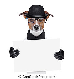 british dog banner - british dog with black bowler hat and...