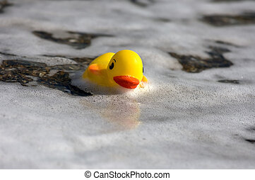 Ducky - Rubber duck at the seaside