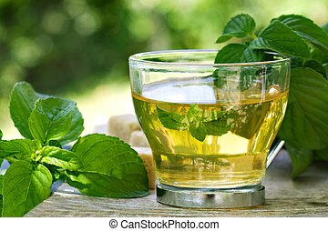 Mint tea with fresh mint leaves and sugar cubes