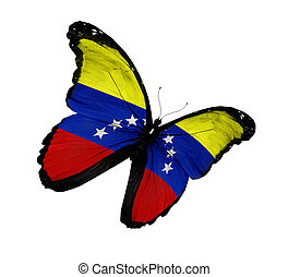 Venezuelan flag butterfly flying, isolated on white background