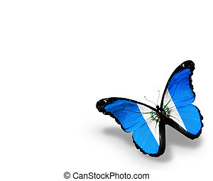 Guatemala flag butterfly, isolated on white background