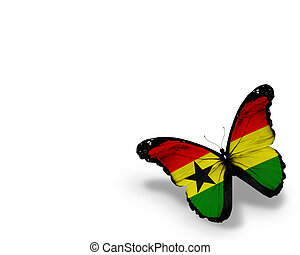 Ghana flag butterfly, isolated on white background