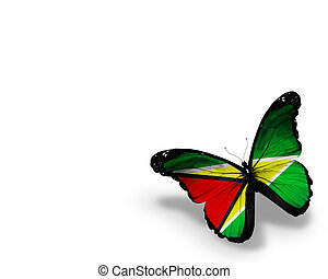 Guyana flag butterfly, isolated on white background