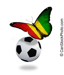 Concept - butterfly with Guinean flag flying near the ball, like football team playing