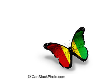 Guinean flag butterfly, isolated on white background