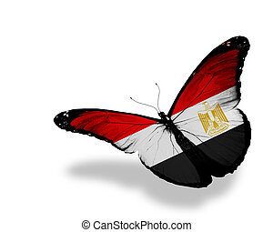 Egyptian flag butterfly flying, isolated on white background