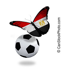 Concept - butterfly with Egyptian flag flying near the ball, like football team playing