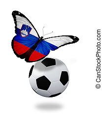 Concept - butterfly with Slovenian flag flying near the ball, like football team playing