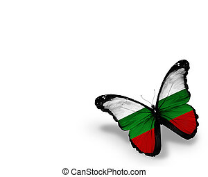 Bulgarian flag butterfly, isolated on white background