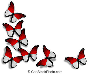 Indonesian flag butterflies, isolated on white background