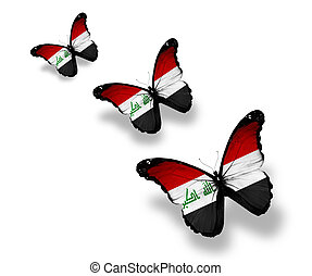Three Iraqi flag butterflies, isolated on white