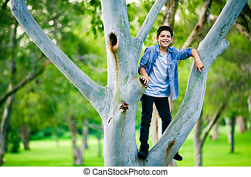 Boy standing on a branch on the tree