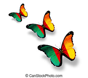 Three Cameroon flag butterflies, isolated on white