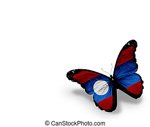 Laotian flag butterfly, isolated on white background