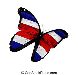 Butterfly costa rica Stock Illustrations. 302 Butterfly ...