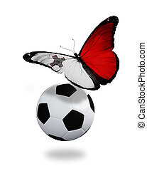 Concept - butterfly with Maltese flag flying near the ball, like football team playing