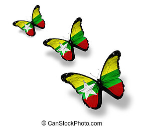 Three Myanmar flag butterflies, isolated on white