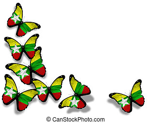 Myanmar flag butterflies, isolated on white background