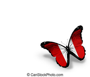 Peruvian flag butterfly, isolated on white background