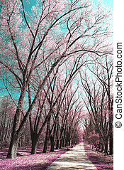 infrared Photography - Photo of summer landscape shot in the...