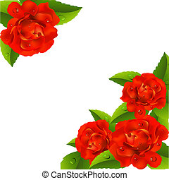 Valentine`s day card with roses - Valentine`s day card with...