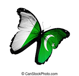 Pakistani flag butterfly flying, isolated on white...