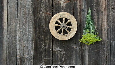 hanging fresh medical herbs bunch on old wooden wall