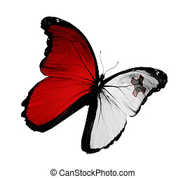 Maltese flag butterfly flying, isolated on white background