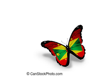 Grenada flag butterfly, isolated on white background