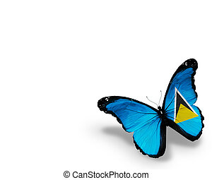 Saint Lucia flag butterfly, isolated on white background