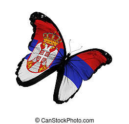 Serbia flag butterfly flying, isolated on white background